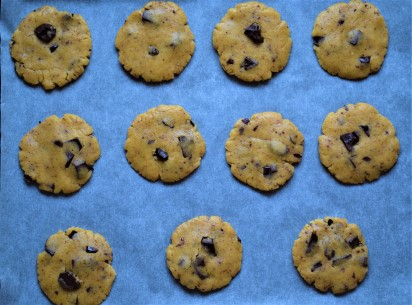 Chocolate cookies in a baking trey
